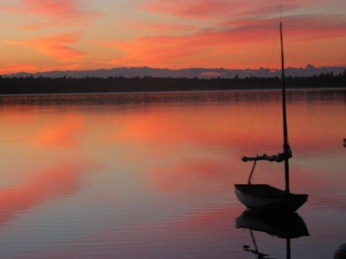 Loons Nest On Cedar Lake : Cedar Lake Twp : Penobscot County : Maine