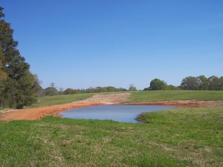 19 Acres Rolling Pastureland : McComb : Amite County : Mississippi