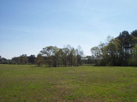9 Acres Rolling Pasture Land : McComb : Amite County : Mississippi
