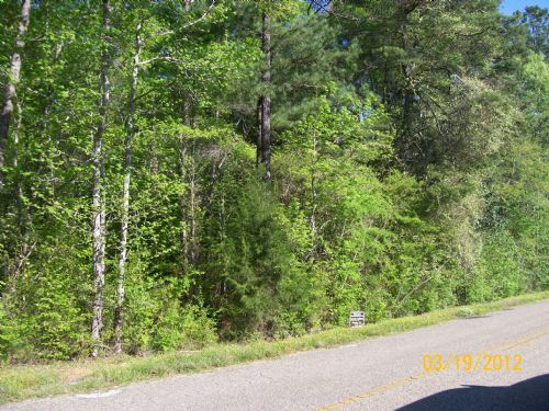 8 +/- Acres In Goshen, Al : Goshen : Pike County : Alabama