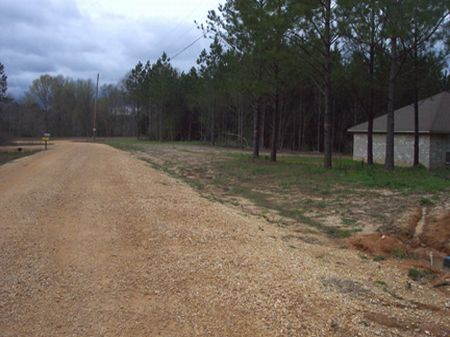 Wooded 3 Ac Homesite : McComb : Pike County : Mississippi