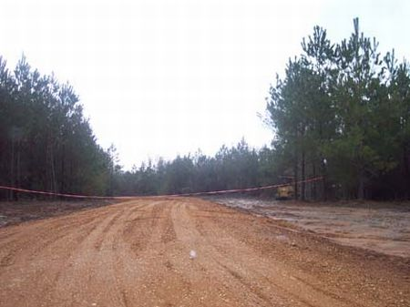 Wooded 2 Acre Homesite : McComb  : Pike County : Mississippi