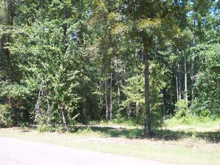 Beautiful Lot, Great Location : McComb : Pike County : Mississippi