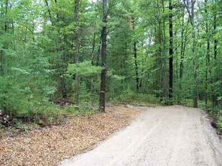 Heidi's Run : Traverse City : Grand Traverse County : Michigan