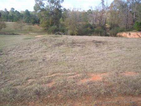 3 Acre Building Lot : Mccomb : Pike County : Mississippi