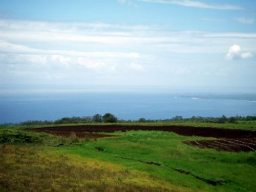8.359 Acres Ag 290,000 Ocean Views : Pepeekeo : Hawaii County : Hawaii