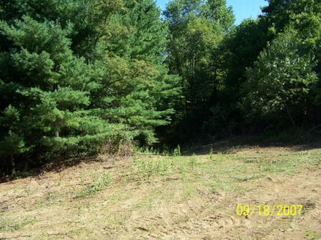 13.5 Acres In Fries, Wooded, Level : Fries : Grayson County : Virginia