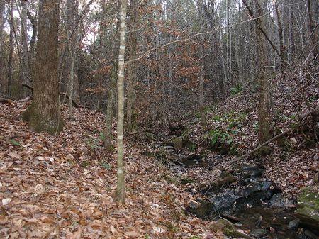 11 Acres : Rockford : Coosa County : Alabama