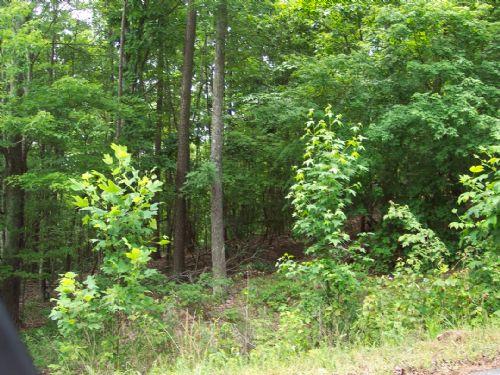 14.52 Acres Sugar Valley : Sugar Valley : Gordon County : Georgia