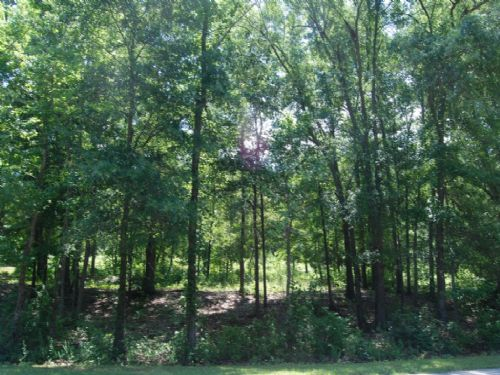 4 Lots In Great Location : Spartanburg : Spartanburg County : South Carolina