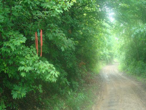 7 A W/ Septic,foundation Garage : Mcarthur : Vinton County : Ohio