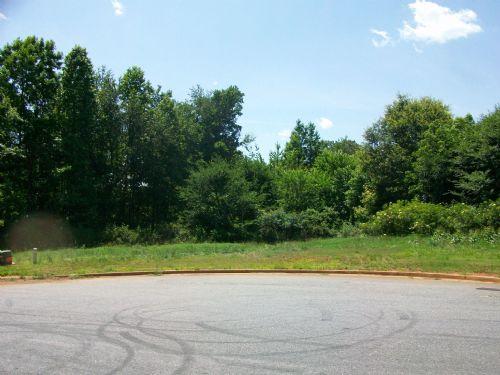Auction- Residential Lot : Hoschton : Jackson County : Georgia