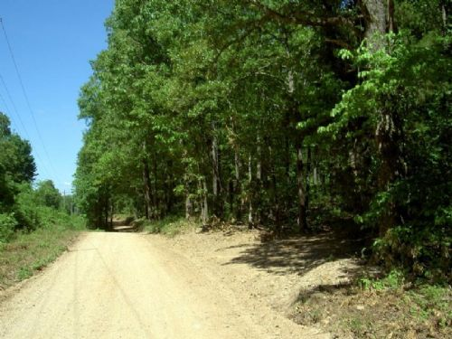 3 Acres Private, Wooded, Elec Avail : 65626 : Howell County : Missouri