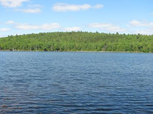 Oxbrook Lake Camp : Grand Lake Stream : Washington County : Maine