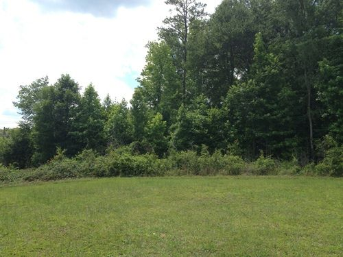 Private Wooded Homesite : Laurens : Laurens County : South Carolina