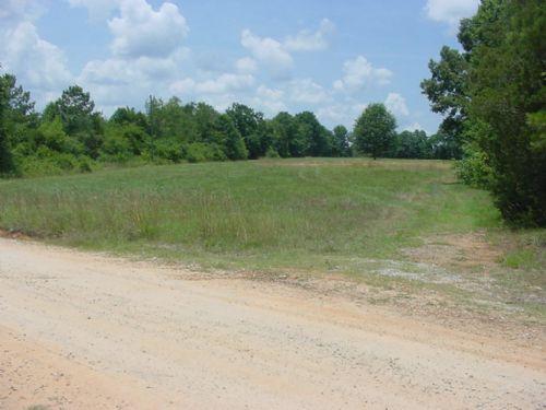 4.73 Acre Home-site : Elberton : Elbert County : Georgia
