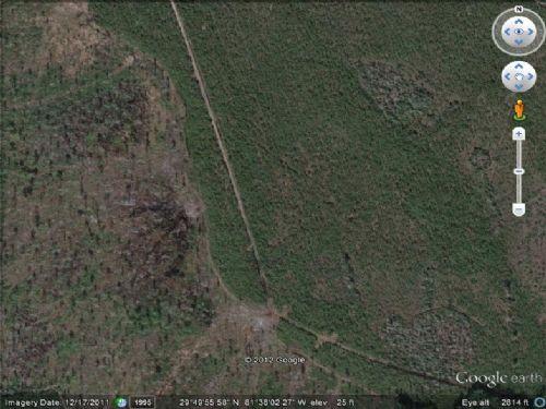 Land For Sale : Putnam : Putnam County : Florida