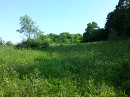 5.45 Acre Building Lot : Sharpsburg : Athens County : Ohio