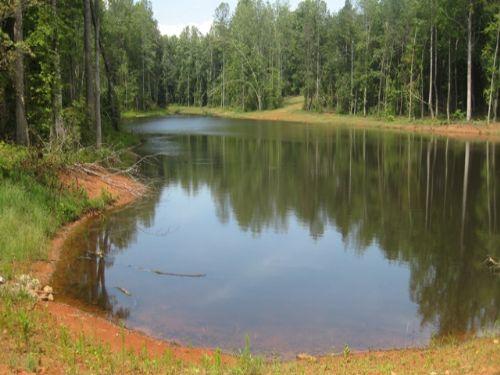 20 Acres Mt Bethel : Harmony : Iredell County : North Carolina