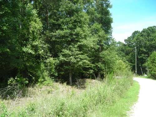 Large Acre Homesite : Saint Stephens : Berkeley County : South Carolina