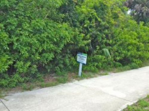 Bank Owned Auction: Beach Homesite : New Smyrna Beach : Volusia County : Florida