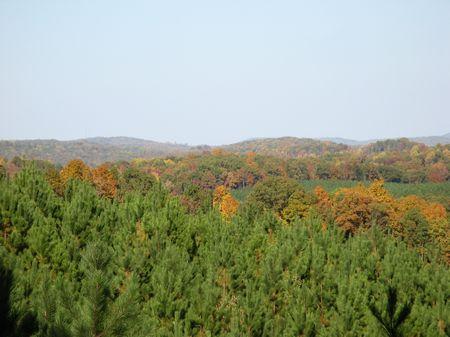 Vista Vue Phase I & Ii : Decatur : Meigs County : Tennessee