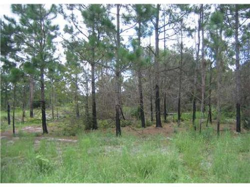 Montura Estates, Fl 1.25 Acres 7k : Labelle/clewiston Area : Hendry County : Florida