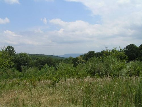Valley View, Wooded, Meadow : Dunlap : Sequatchie County : Tennessee