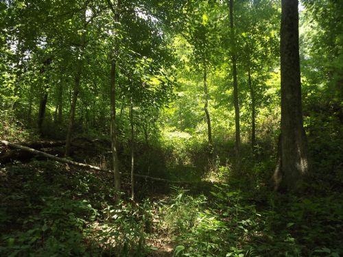 13+ Acres : Mcarthur : Vinton County : Ohio