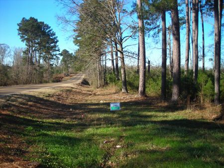 6.66 Acre Homesite : Liberty : Amite County : Mississippi