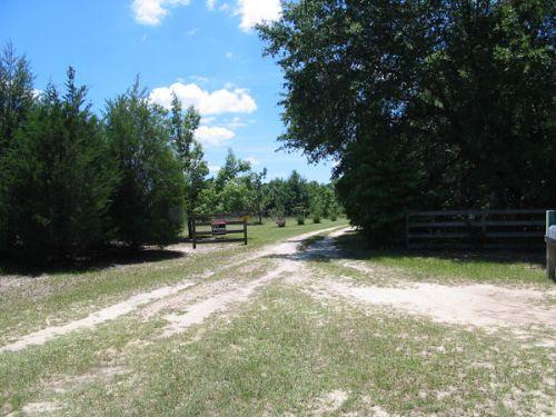 19.67 Acres Open & Wooded : Waynesboro : Burke County : Georgia
