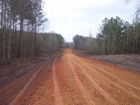 Wooded 2 Acre Homesite : Magnolia : Pike County : Mississippi