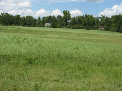+/-15.13 Acres : Stamps : Lafayette County : Arkansas