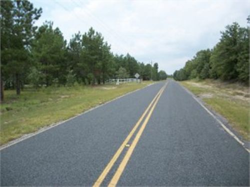 Bring All Offers 4.2 Acres : Cassatt : Kershaw County : South Carolina