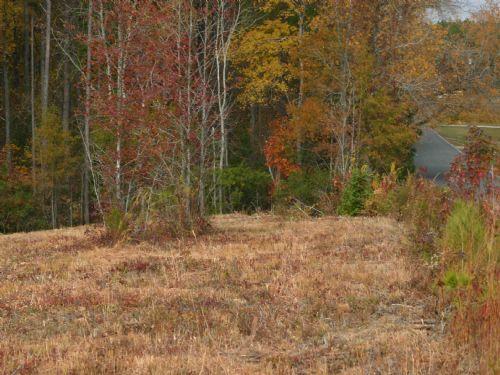 9.043 Property In Blythewood : Blythewood : Richland County : South Carolina