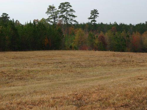 5.1 Acres In Blythewood : Blythewood : Richland County : South Carolina