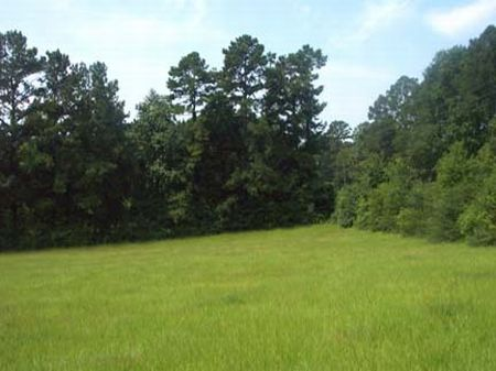 Beautiful 2 Acre Country Lot : Liberty : Amite County : Mississippi