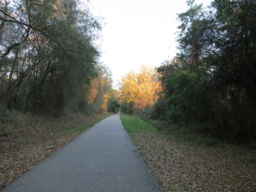 4.79 Acres - Access To Bike Trails : Hawthorne : Alachua County : Florida