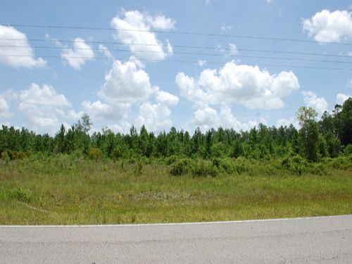 A-389 - 12.3 Acres : Hawthorne : Alachua County : Florida