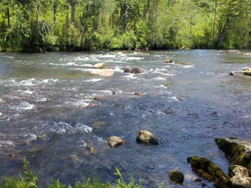 Rushing Stream And The New River : West Jefferson : Ashe County : North Carolina