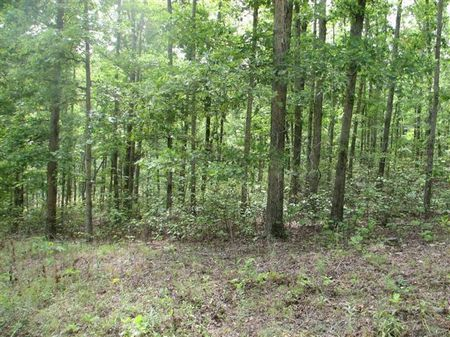 Lot #19 Block 40 Hidden Valley Lake : Nunnelly : Hickman County : Tennessee