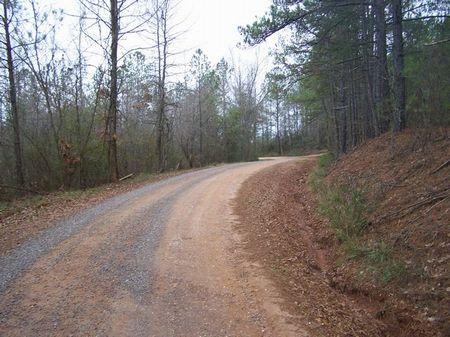 6.01 Wooded Homesite : Ashland : Clay County : Alabama