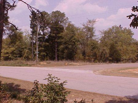 Corner Lot  yards From Clark Hill : Elberton : Elbert County : Georgia