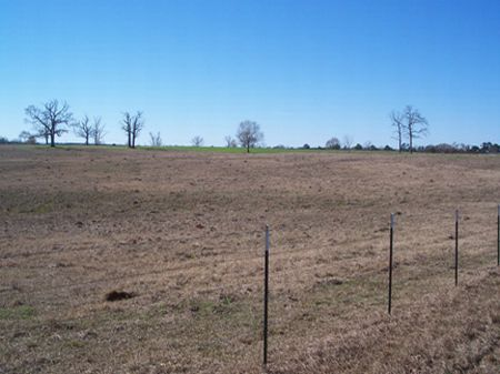 18 Acres Of Pastureland : Osyka : Pike County : Mississippi