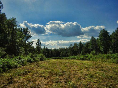 Reduced 5.44 Acres For Homesite : Moore : Spartanburg County : South Carolina