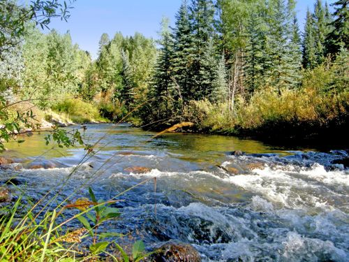 Florida River Estate : Durango : La Plata County : Colorado