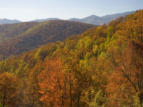 4+ Ac Blue Ridge Parkway Land : Boone : Watauga County : North Carolina