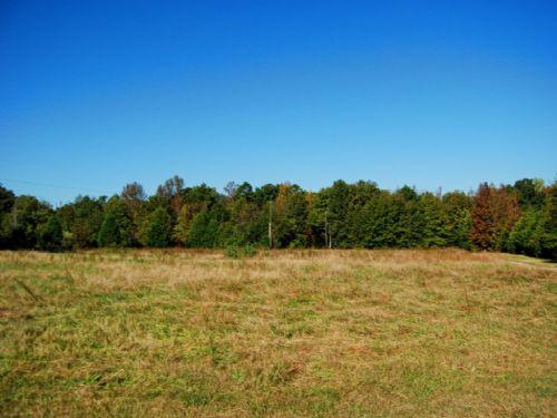 5 Acre Mini Farm In Cross Anchor : Cross Anchor : Spartanburg County : South Carolina