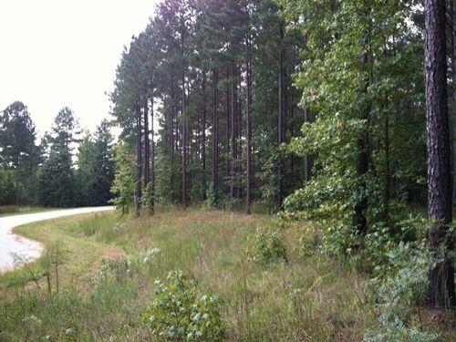 Plantation Point Lake Access Land Lot For Sale Hodges
