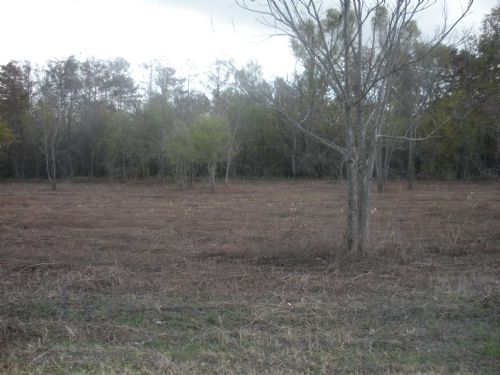 2 Waterfront Lots Near Marksville : Marksville : Avoyelles Parish : Louisiana
